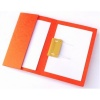 Railex Easifile with Pocket Foolscap Mandarin PK25